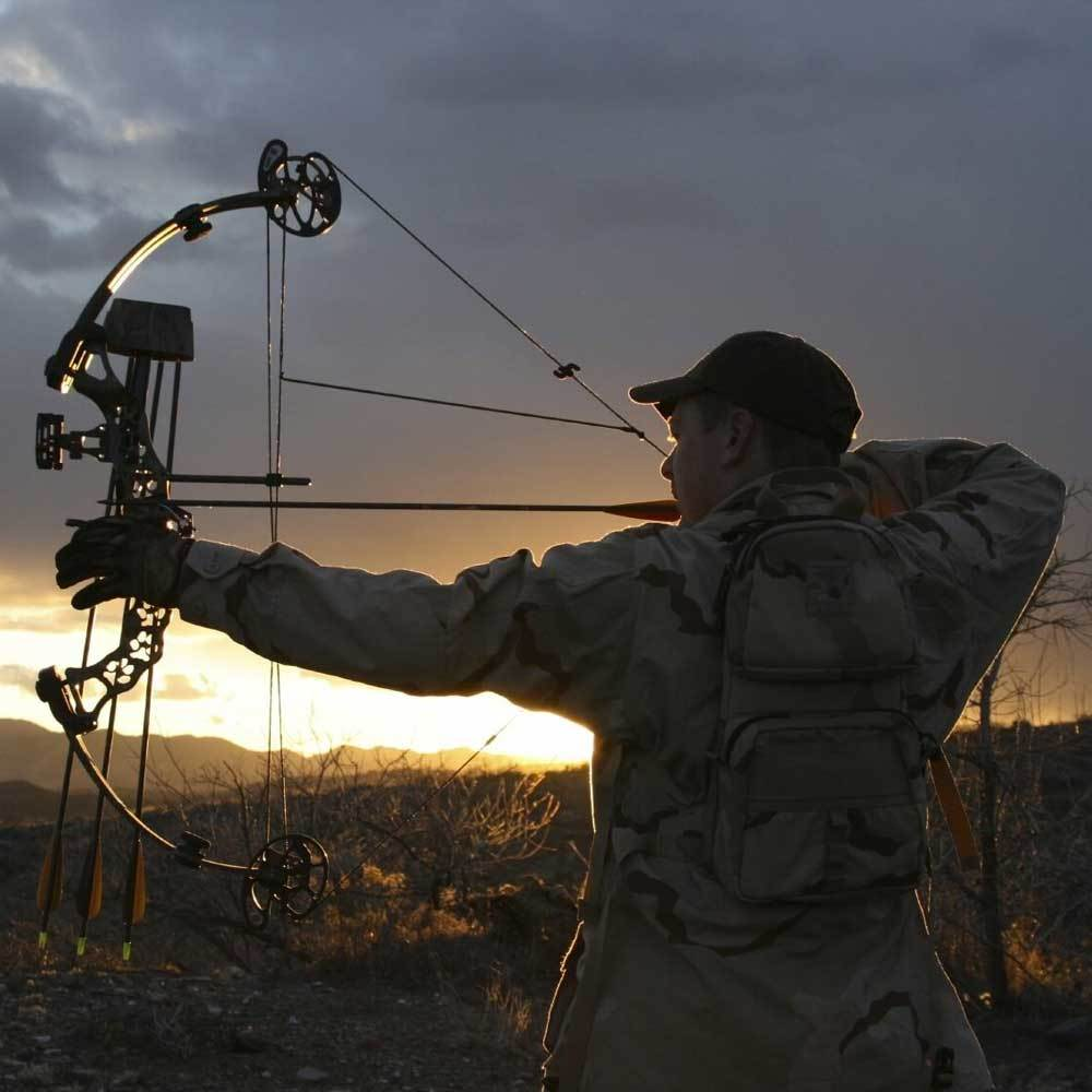 Best Compound Bow 2019 For Target Shooting And Hunting