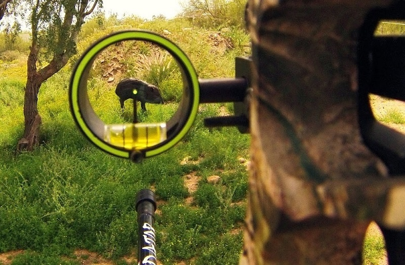 Best Bow Sight for Elk Hunting